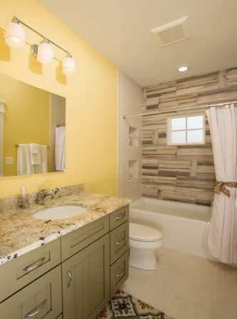 Falls Church, VA-Contemporary Guest Bathroom Tub/Shower